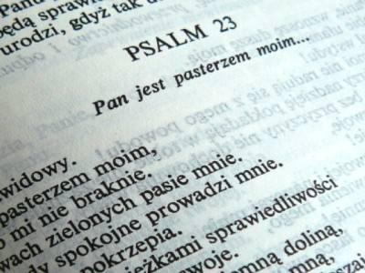 Światowy Dzień Biblii